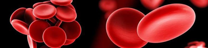 Estudios de Trombofilia